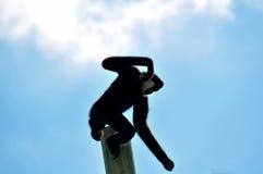 Männlicher Gibbon-Affe, der weg vom Pfosten springt Lizenzfreie Stockfotografie