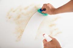 Männlicher Hausmeister Cleaning Counter Stockbild