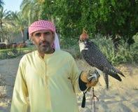 Männlicher indischer älterer Lenker des Falken in der arabischen nationalen Kleidung mit mit Kapuze Falken auf seiner Hand Stockfotografie