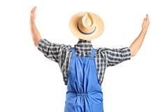 Männlicher Landwirt, der mit den angehobenen Händen gestikuliert Stockbild