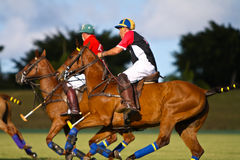 Männlicher Polo-Spieler Lizenzfreie Stockfotos