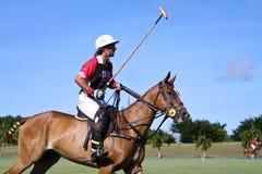 Männlicher Polo-Spieler Stockbilder