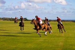 Männlicher Polo-Spieler Stockbild