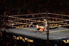 Männlicher Ringkämpfer Finn Balor NXT steckt Adrian Neville für die drei c fest Stockbilder