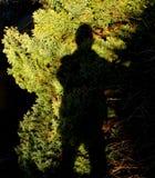 Männlicher Schatten, unheimlich, gegen Gartenlaub lizenzfreie stockfotos