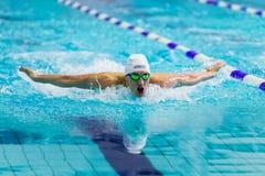 Männlicher Schwimmerathletenschwimmen-Schmetterlingsanschlag im Pool Stockfotografie