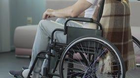 Männlicher sitzender Rollstuhl und Berühren seiner Knie, untröstliche medizinische Schlussfolgerung stock video footage