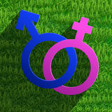 Männlicher und weiblicher Symbolikonenvektor Lizenzfreies Stockfoto