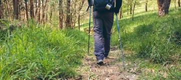 Männlicher Wanderer, der Trekking tut lizenzfreie stockfotos
