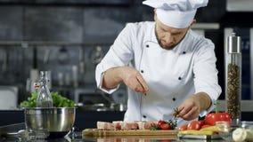 Männliches Chefgewürzfleisch in der Zeitlupe Porträt des Kochgewürzsteaks stock footage