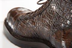mäns skor som göras från krokodilläder, snör åt Arkivfoto