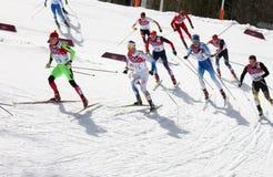 Mäns start för mass för längdlöpning 50km Royaltyfria Foton