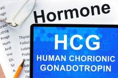 Mänsklig chorionic gonadotropin (HCG) Arkivbilder