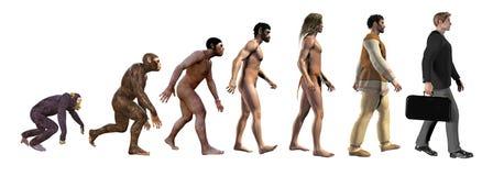 Mänsklig evolution, från apor till affären, illustration 3d stock illustrationer