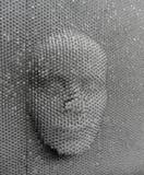 Mänsklig framsida som göras från stiftbrädeleksaken Arkivfoto
