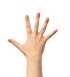 Mänsklig hand över white Arkivfoton