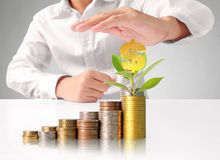 Mänsklig hand för hand som sätter myntet till pengar Arkivbilder