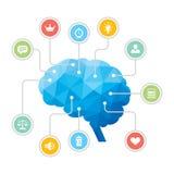 Mänsklig hjärna - blå polygonInfographic illustration Arkivbilder