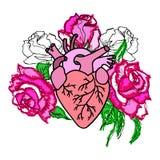 Mänsklig hjärta med rosa rosor Royaltyfria Foton