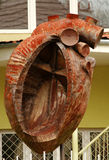 Mänsklig hjärtaskulptur Fotografering för Bildbyråer