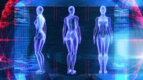 Mänsklig kvinnlig för animeringbiologi för anatomi 3D teknologi för vetenskap stock video