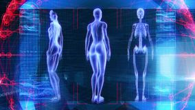 Mänsklig kvinnlig för animeringbiologi för anatomi 3D teknologi för vetenskap lager videofilmer