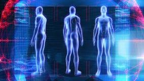 Mänsklig manlig för animeringbiologi för anatomi 3D teknologi för vetenskap stock video