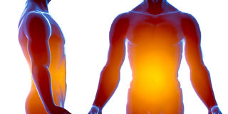 Mänsklig manlig kropp för stråle x Isolerat på vit bakgrund 3d framför royaltyfri illustrationer