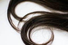 Mänsklig närbild för lockigt hår på vit arkivfoto