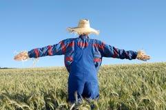 mänsklig scarecrow arkivfoto