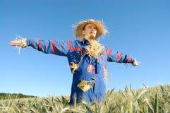 mänsklig scarecrow arkivbild