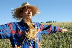 mänsklig scarecrow arkivbilder