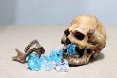 Mänsklig skalle för murkna tänder med godisen på wood bakgrund som ett folk som för mycket äter godisen Royaltyfria Bilder
