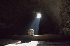 Mänsklig skalle i den läskiga tunnelbanan royaltyfria bilder