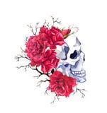 Mänsklig skalle i röda rosblommor, filialer vattenfärg royaltyfri illustrationer