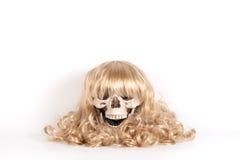 Mänsklig skalle med blont hår Fotografering för Bildbyråer
