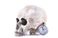 Mänsklig skalle och klocka Royaltyfri Bild