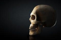 Mänsklig skalleprofil på mörk bakgrund Royaltyfri Bild