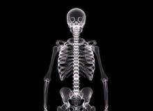 mänsklig stråle för huvuddel x Arkivbild