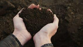 Mänskliga händer tar en prövkopia av den svarta fertila jorden stock video