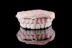 mänskliga model tänder fotografering för bildbyråer