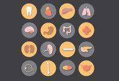 Mänskliga organ - medicin stock illustrationer