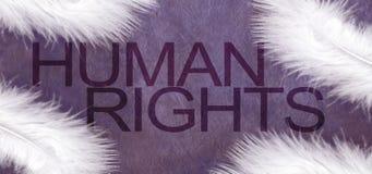 Mänskliga rättigheter och vita fjädrar av fred Royaltyfri Foto
