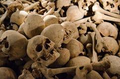 mänskliga skallar Arkivbilder