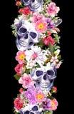 Mänskliga skallar med blommor seamless kant Vattenfärgram Arkivfoto