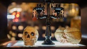 Mänskliga skallar och en glass tabell arkivbilder