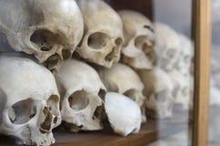 Mänskliga skallar på Nea Moni Monastery på den Chios ön/Grekland royaltyfri bild