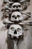 Mänskliga skallar som delen av ossuarygarnering Royaltyfri Bild