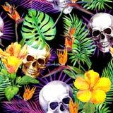 Mänskliga skallar, tropiska sidor, exotiska blommor Upprepa modellen på svart bakgrund vattenfärg Arkivbild