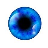 Mänskligt öga för Closeup också vektor för coreldrawillustration royaltyfri illustrationer
